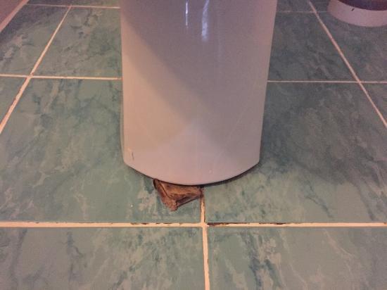 Akdeniz Apart Hotel: toiletpot vastgezet met een kartonnetje (dat er al maanden zat zo te zien)