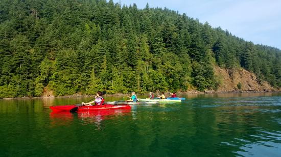 Harrison Eco Tours: Kayak trip