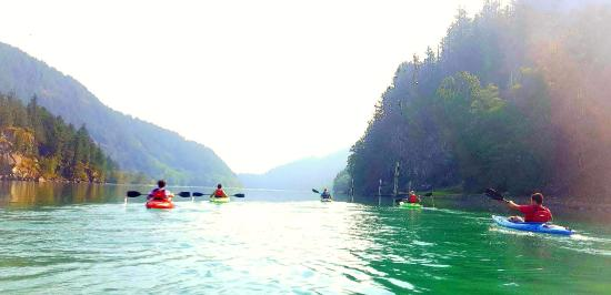 Harrison Eco Tours: Kayak Tour Harrison River
