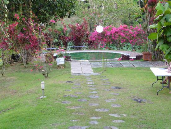 Sepilok Forest Edge Resort: The grounds