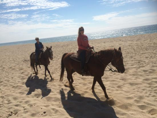 Sea Horse Ranch: The best way to walk on a beach...