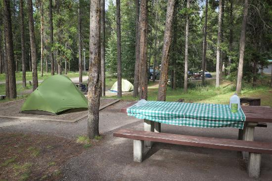 Loop 3 at Whistlers Campground.