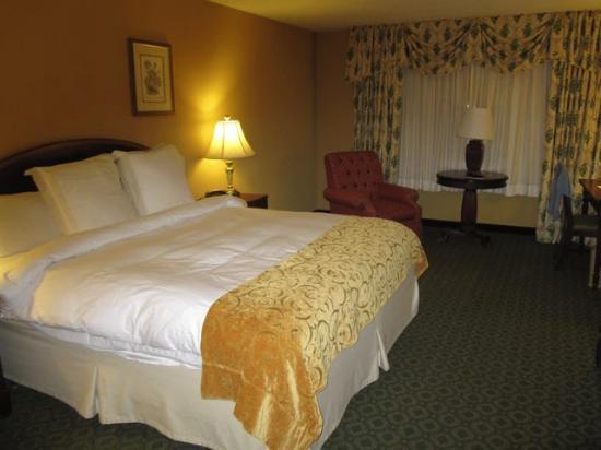Stockton Seaview Hotel & Golf Club: Typical Room