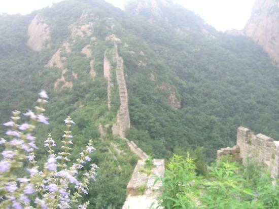 Things To Do in Nine Door of Great Wall, Restaurants in Nine Door of Great Wall