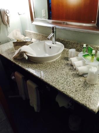 Holiday Inn Express Saint Robert-Fort Leonard Wood: Clean bathroom