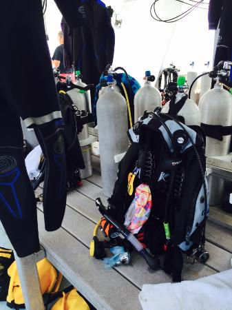 Flower Garden Banks National Marine Sanctuary : Pic showing getting ready to dive on the M/V Fling.