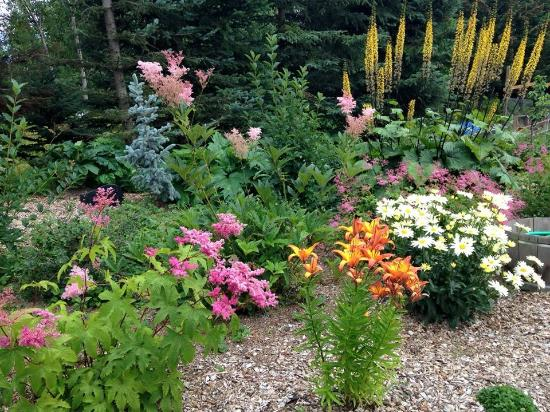 Bear Creek Winery and Lodging: The beautiful garden