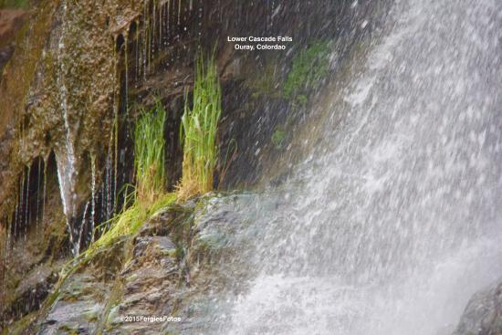 Lower Cascade Trail and Falls: Lower Cascade Falls