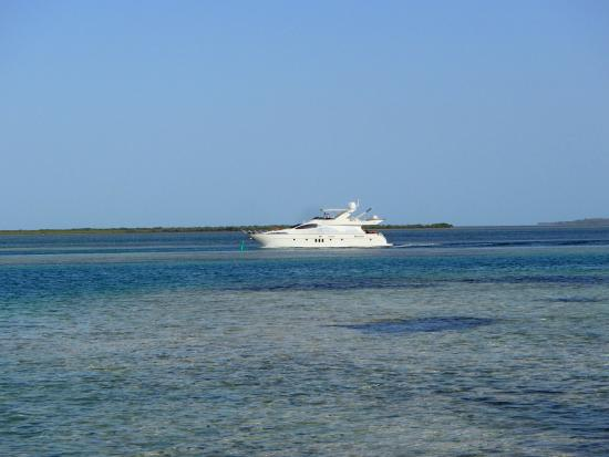 Bimini: View while eating