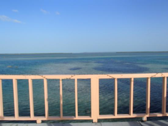 Bimini: View from the rooftop