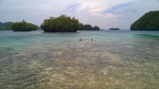 Club Tara Resort: No sandy beach but swimming still good