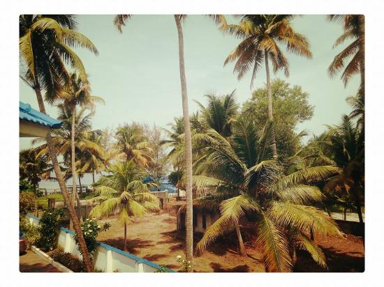 Blue Waters Cherai: view from the room