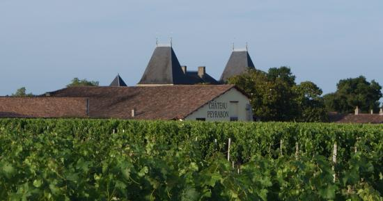 Saint-Sauveur, Франция: Le château