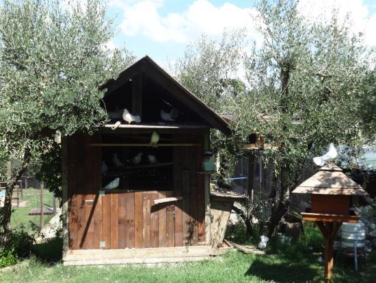Camera da letto con vasca idromassaggio - Picture of L'Oasi e le ...