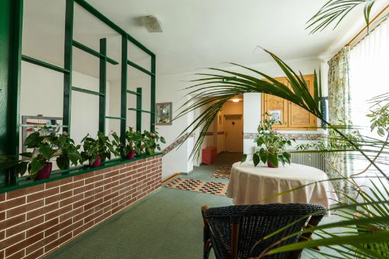 Weingut & Landhaus Willi Opitz: Floor