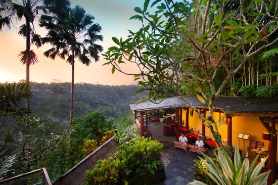 Kupu Kupu Barong Villas Tree Spa Review