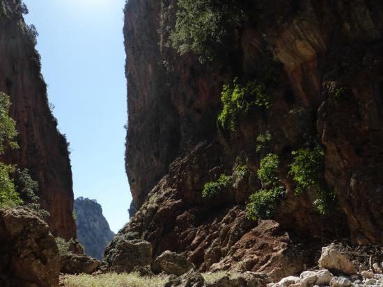 Aradena Gorge - Foto van The Gorge of Aradena, Aradena ...