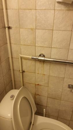 mattonelle bagno sporche - Picture of Okhtinskaya Hotel, St ...