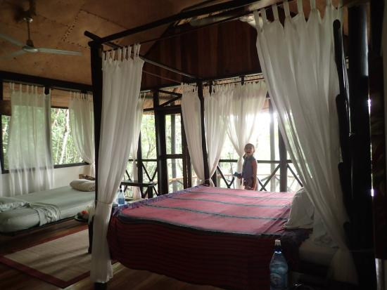 Table Rock Jungle Lodge: River Valley View Cabanas are great for the whole family
