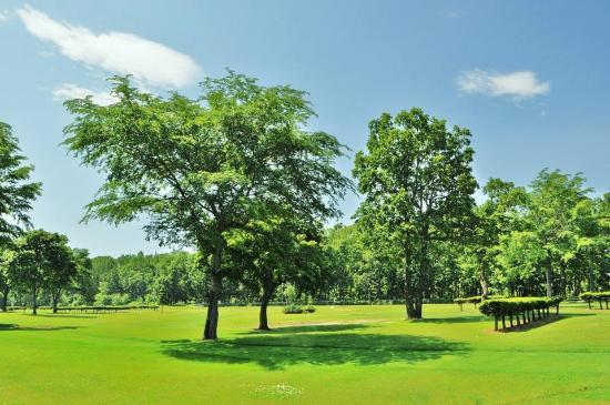 Donguri Park