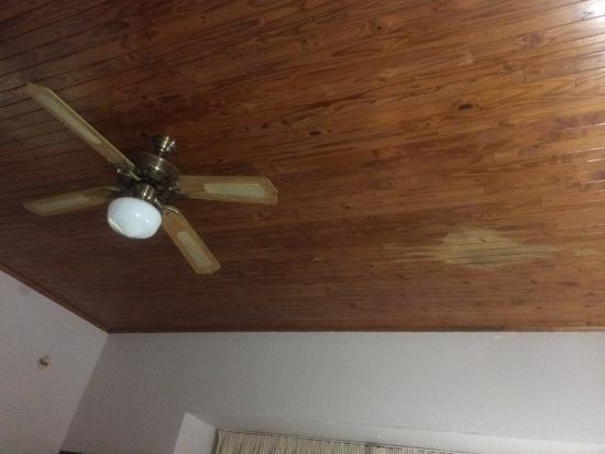 Ceiling Fan Fell Off Sante Blog