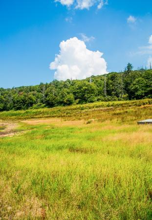 Pembroke, VA: The lake bed.