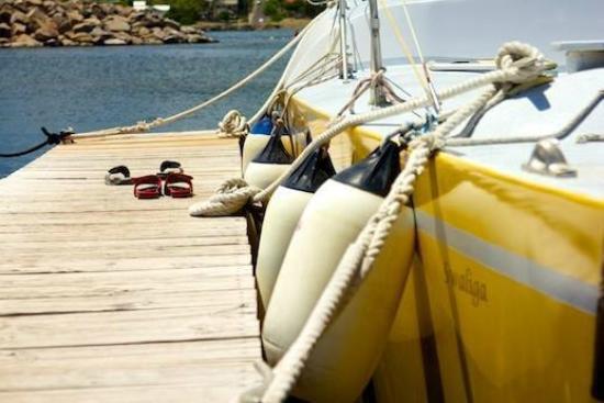 Blue Water Safaris: Barefoot Casual