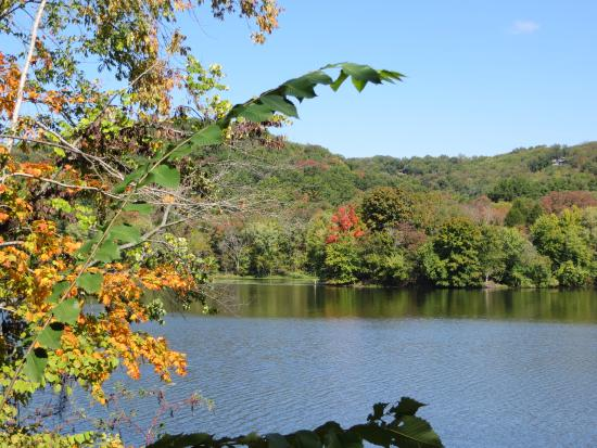 Radnor Lake State Park: View of Radnor Lake from Otter Creek Road