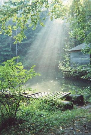 Kripalu Center for Yoga & Health: Monk's pond, a short hike away