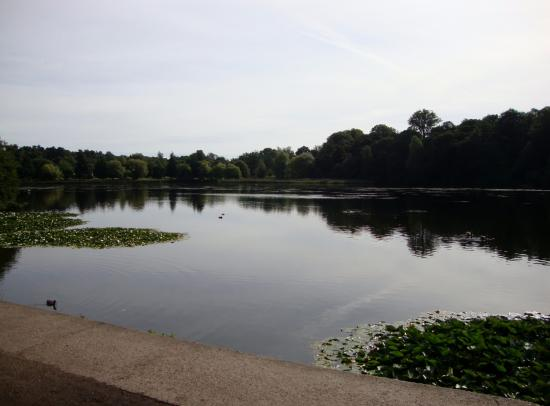 Wollaton Hall and Park: Lake