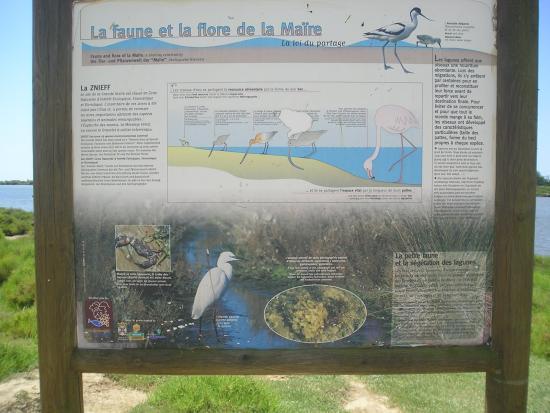 Portiragnes, Francia: Explanatory plaque