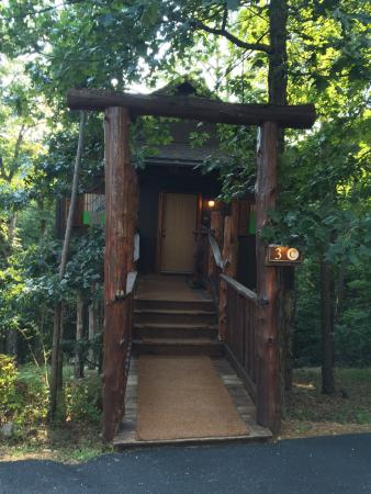Treehouse delight picture of eureka springs treehouses for Tree house cabins arkansas