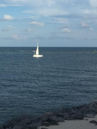 Orange Beach Sailing Charters And Sunset Cruises Captain Randy At Sail