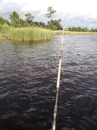Fishing in lake shelby picture of gulf state park gulf for Surf fishing gulf shores