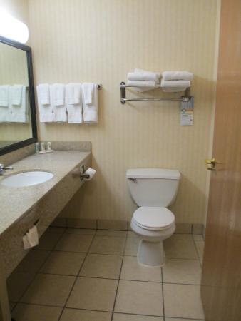 Quality Inn & Suites : Clean bathroom!