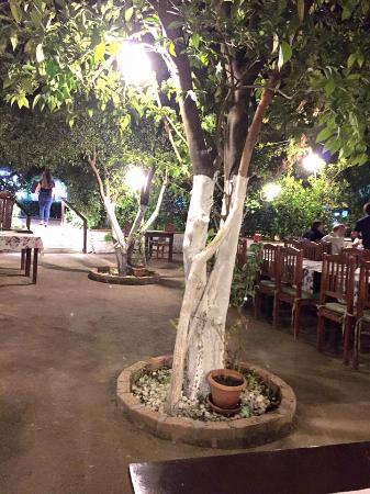Dursun Usta: The beautiful garden restaurant
