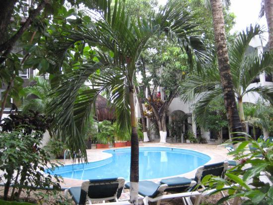 Hacienda Paradise Boutique Hotel by Xperience Hotels: burrr