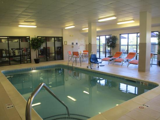 Hampton Inn & Suites Nashville-Smyrna : Small but clean nicely decorated pool.