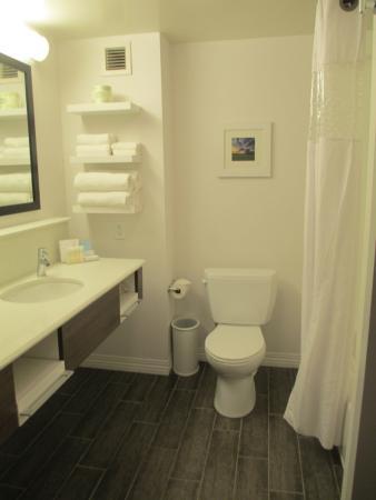 Hampton Inn & Suites Nashville-Smyrna : Bright bathroom - very nice!