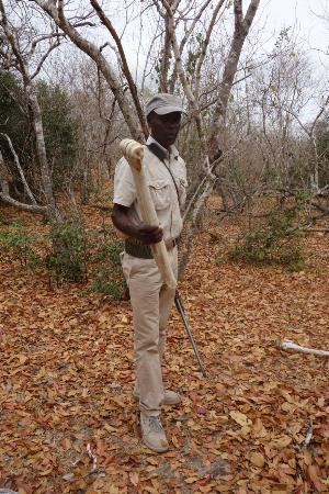 Siwandu : bush walk guide