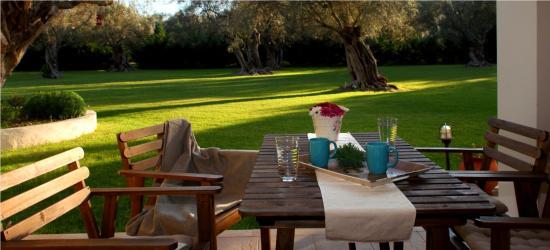 Villa Olivastro : garden view