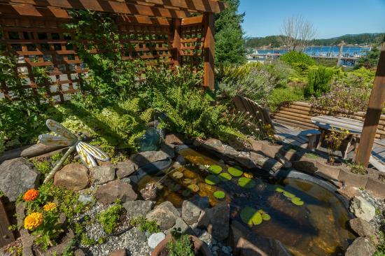 Quathiaski Cove, Καναδάς: Pond in the Front Courtyard