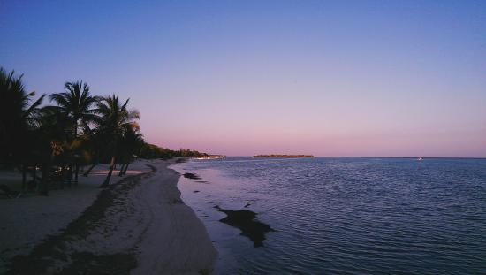 Little Cayman Beach Resort: The beach at sunset