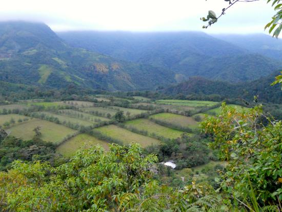 El Refugio de Intag Cloud Forest Lodge: There are gorgeous views everywhere you look.