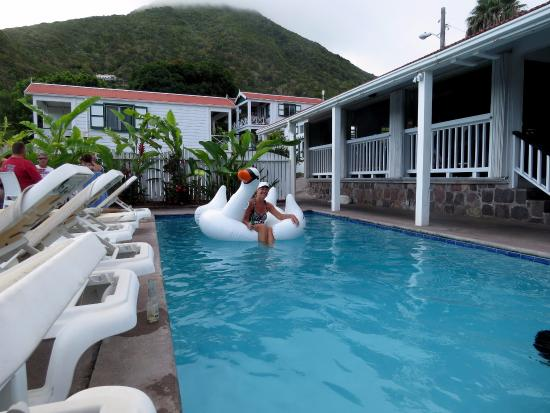 Tropic's Cafe: The refreshing pool and swan