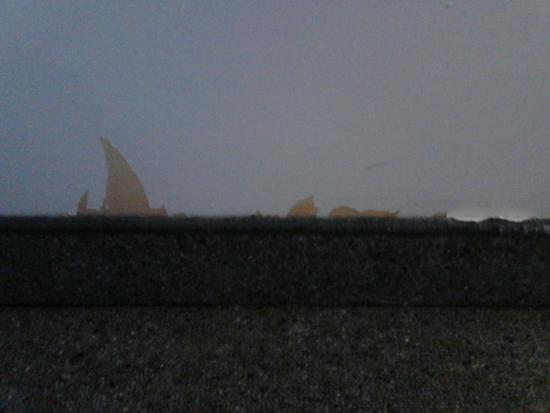 Ascot Epsom Motel : Ripped wallpaper