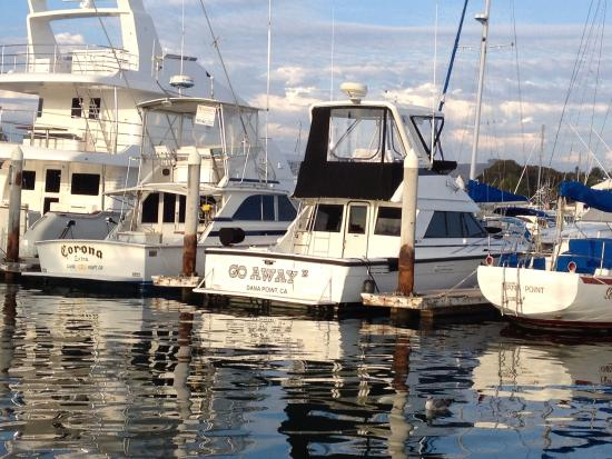 Dana Point, Kalifornia: Water like a mirror!