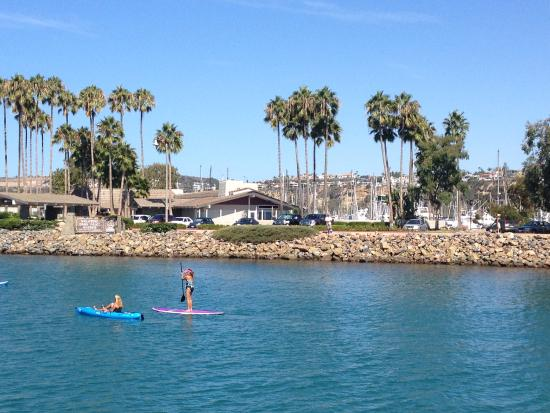 Dana Point, CA: Paddle-boarding is so popular.