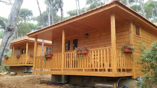 la maison de la foret jezzine liban voir les tarifs et avis lodge refuge tripadvisor. Black Bedroom Furniture Sets. Home Design Ideas