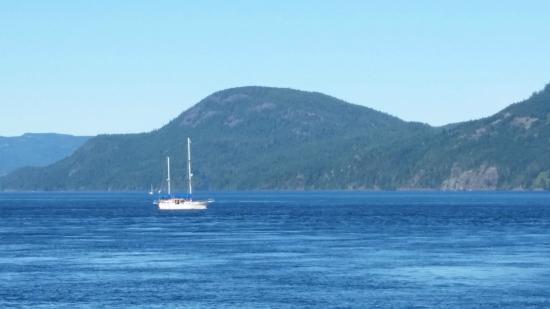 Brown's Bay Resort: sailing winds